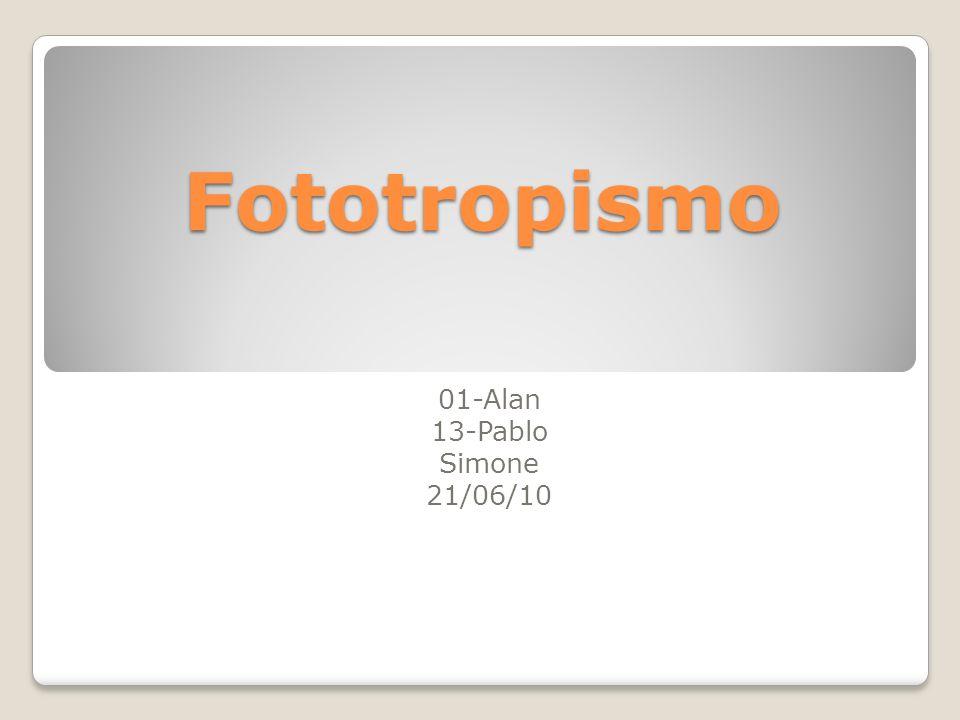 Fototropismo 01-Alan 13-Pablo Simone 21/06/10