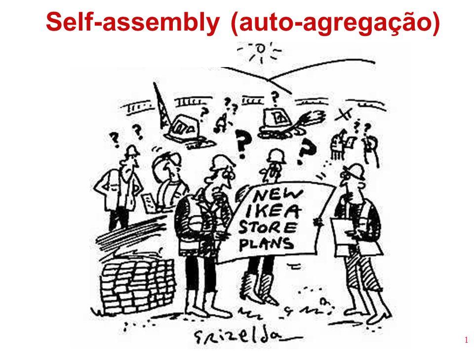 Self-assembly (auto-agregação)