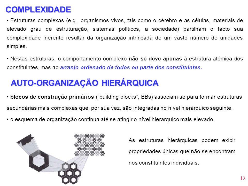 AUTO-ORGANIZAÇÃO HIERÁRQUICA