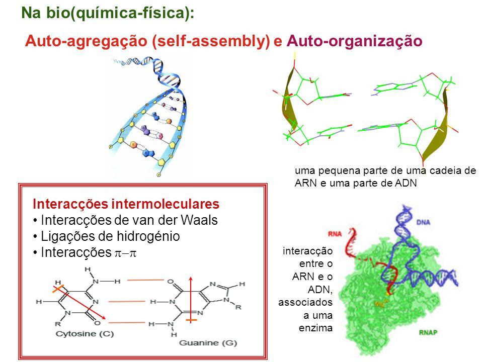 Na bio(química-física):