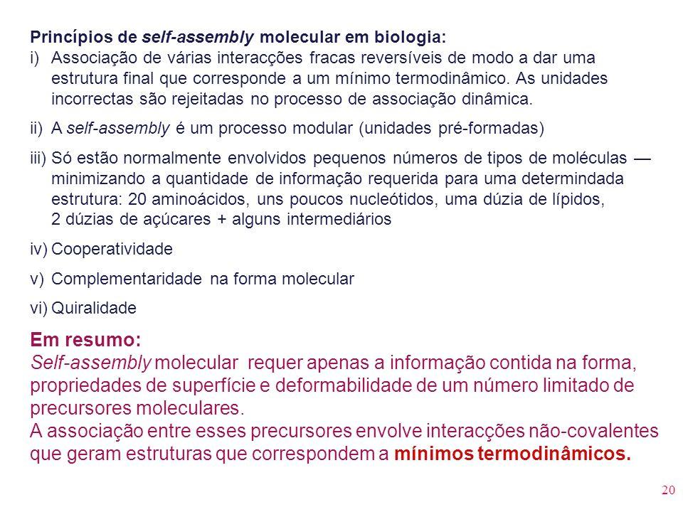 Princípios de self-assembly molecular em biologia: