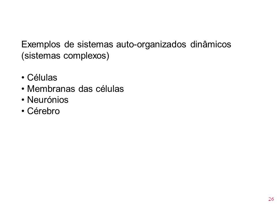 Exemplos de sistemas auto-organizados dinâmicos