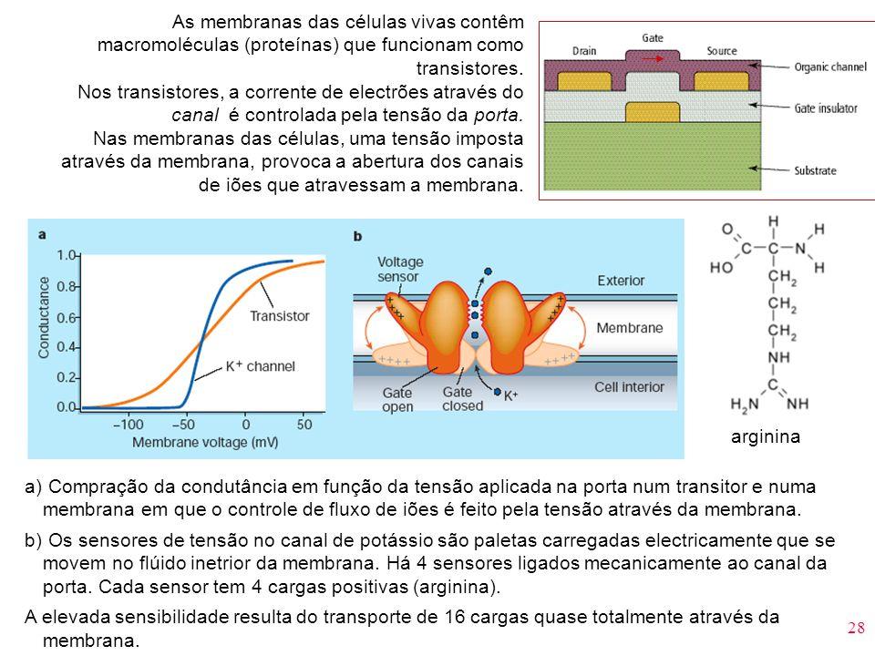 As membranas das células vivas contêm macromoléculas (proteínas) que funcionam como transistores.
