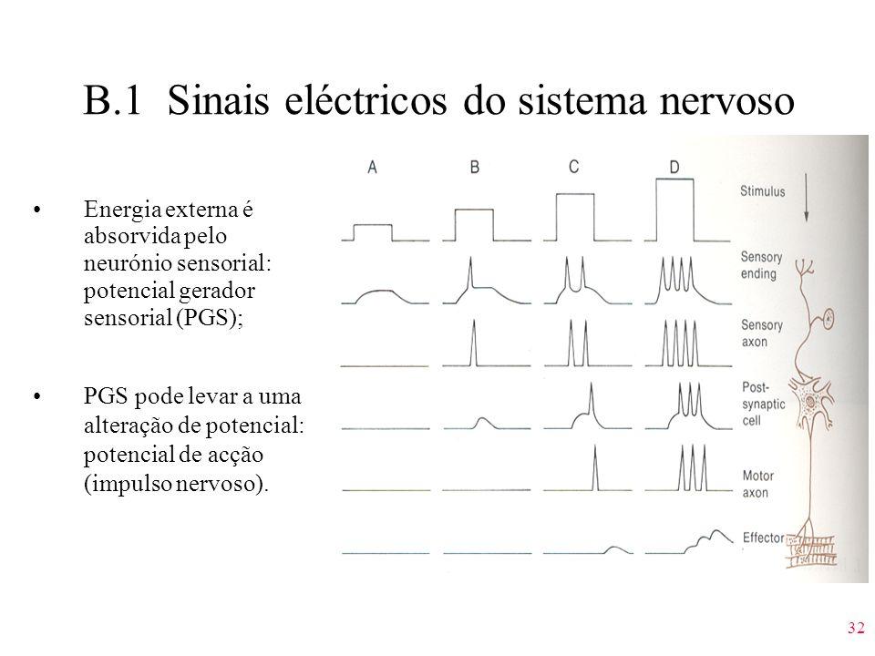 B.1 Sinais eléctricos do sistema nervoso