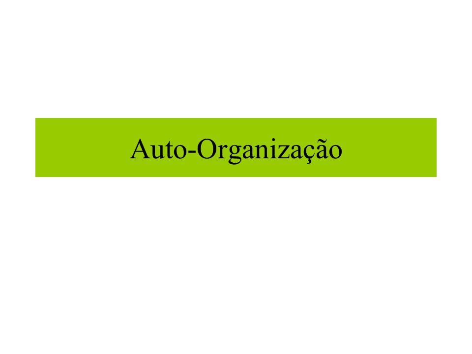 Auto-Organização