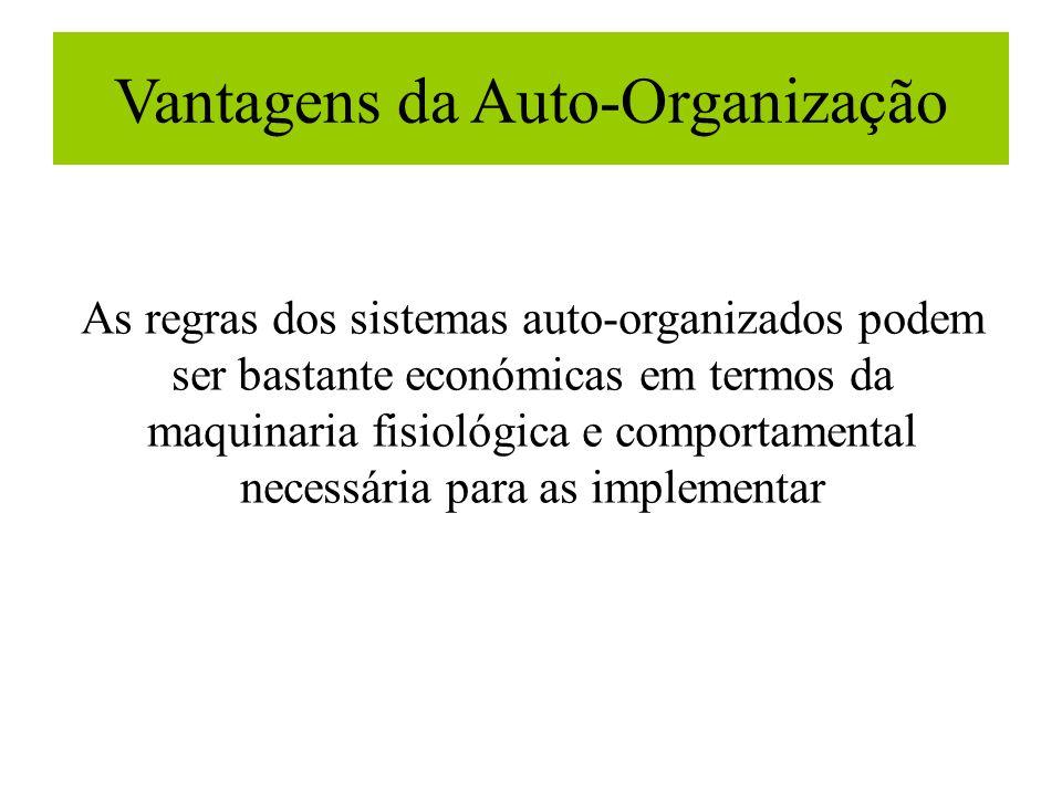 Vantagens da Auto-Organização