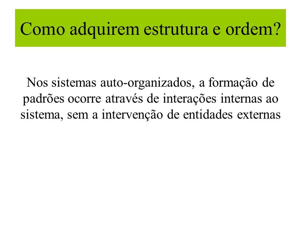 Como adquirem estrutura e ordem