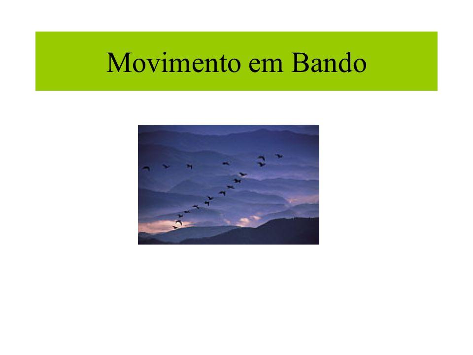 Movimento em Bando