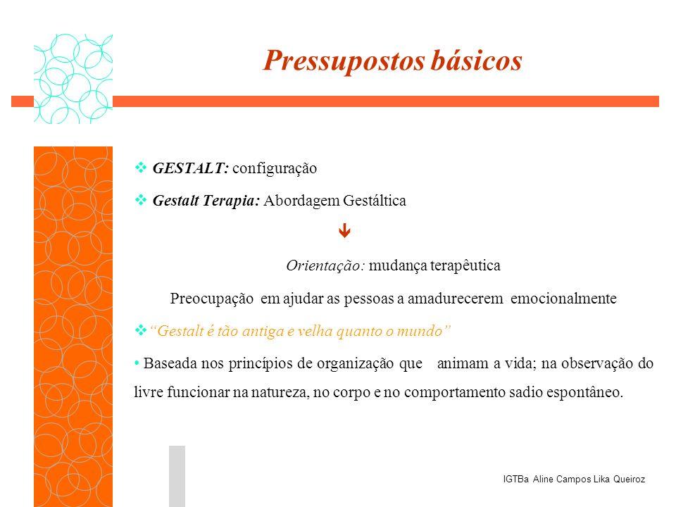 Pressupostos básicos GESTALT: configuração