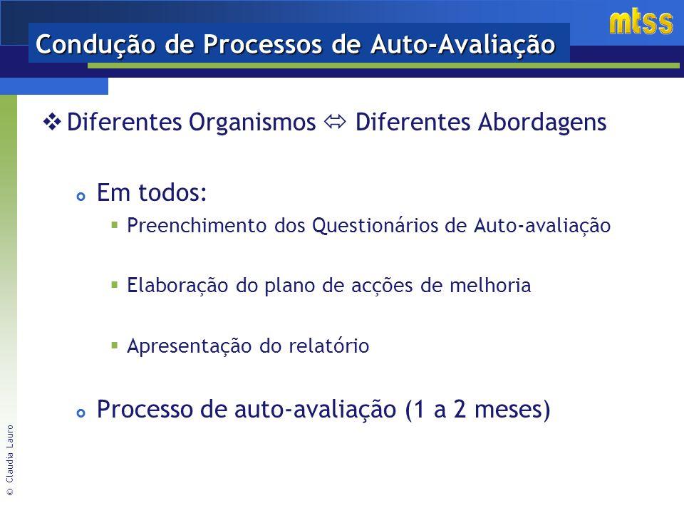 Condução de Processos de Auto-Avaliação