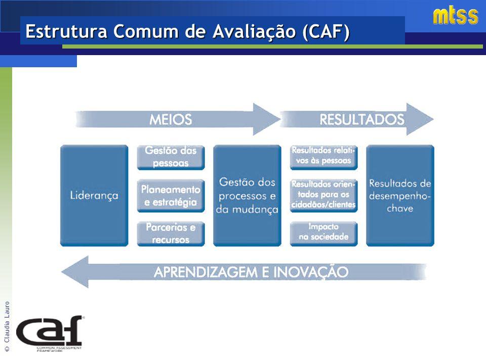 Estrutura Comum de Avaliação (CAF)