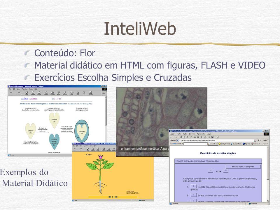 InteliWeb Conteúdo: Flor