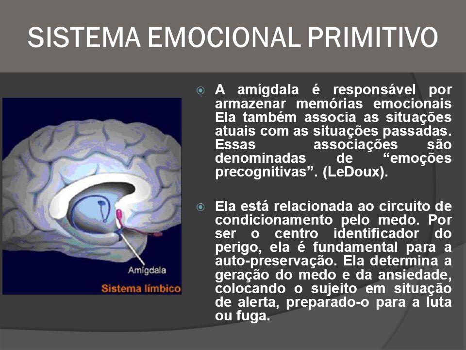 SISTEMA EMOCIONAL PRIMITIVO
