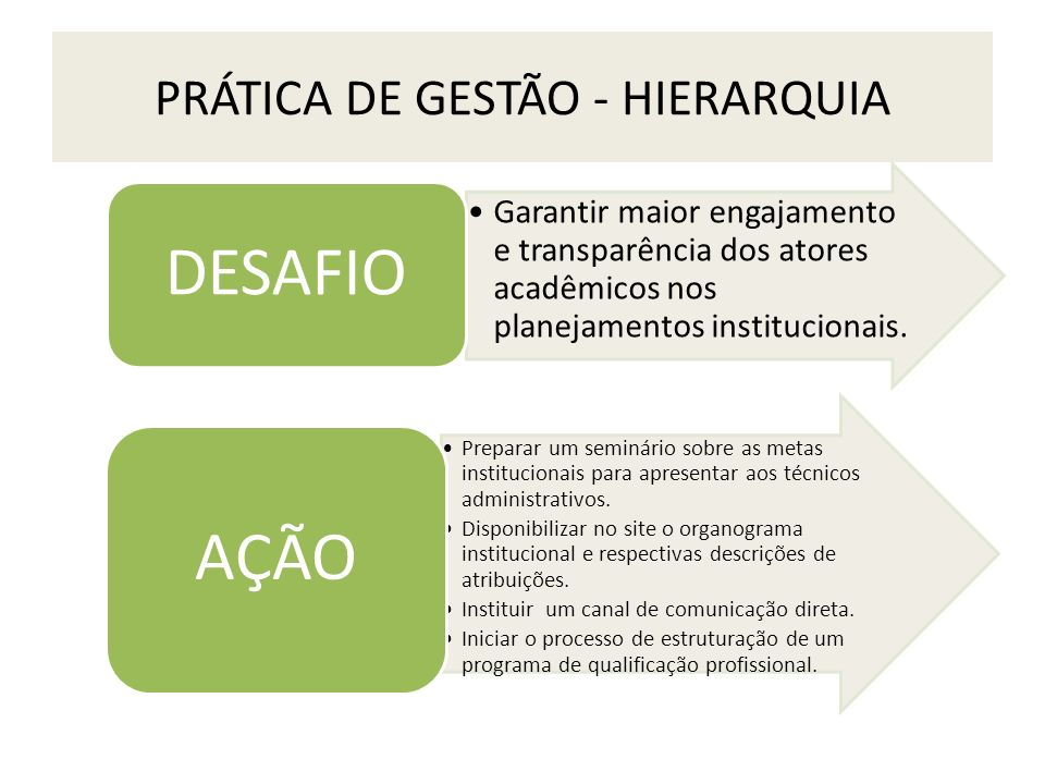 PRÁTICA DE GESTÃO - HIERARQUIA