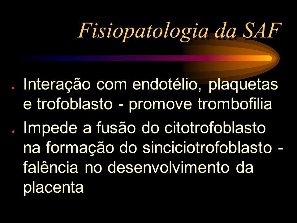 Fisiopatologia da SAF Interação com endotélio, plaquetas e trofoblasto - promove trombofilia.