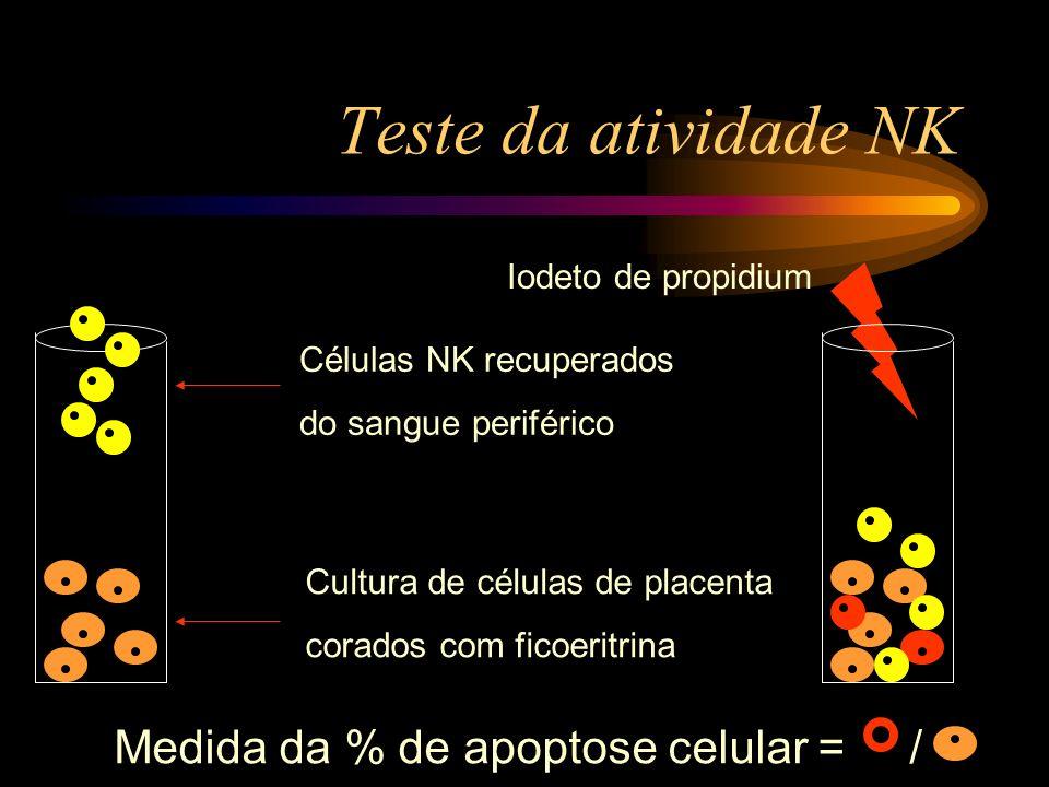 Teste da atividade NK Medida da % de apoptose celular = /