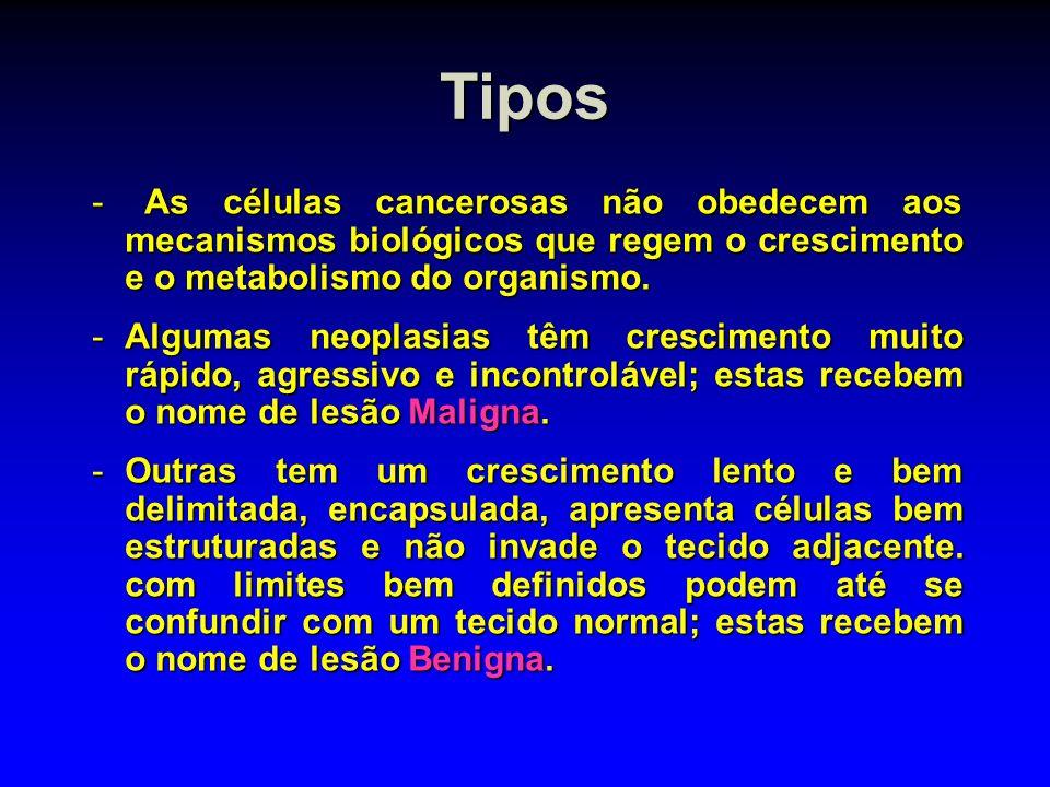 Tipos As células cancerosas não obedecem aos mecanismos biológicos que regem o crescimento e o metabolismo do organismo.