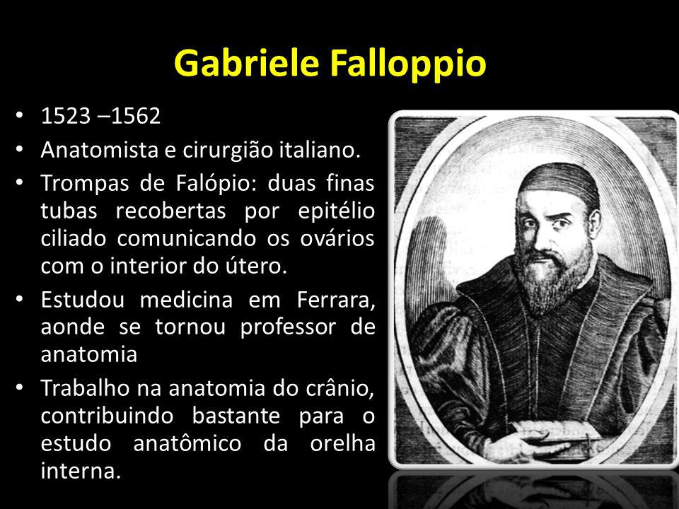 Gabriele Falloppio 1523 –1562 Anatomista e cirurgião italiano.