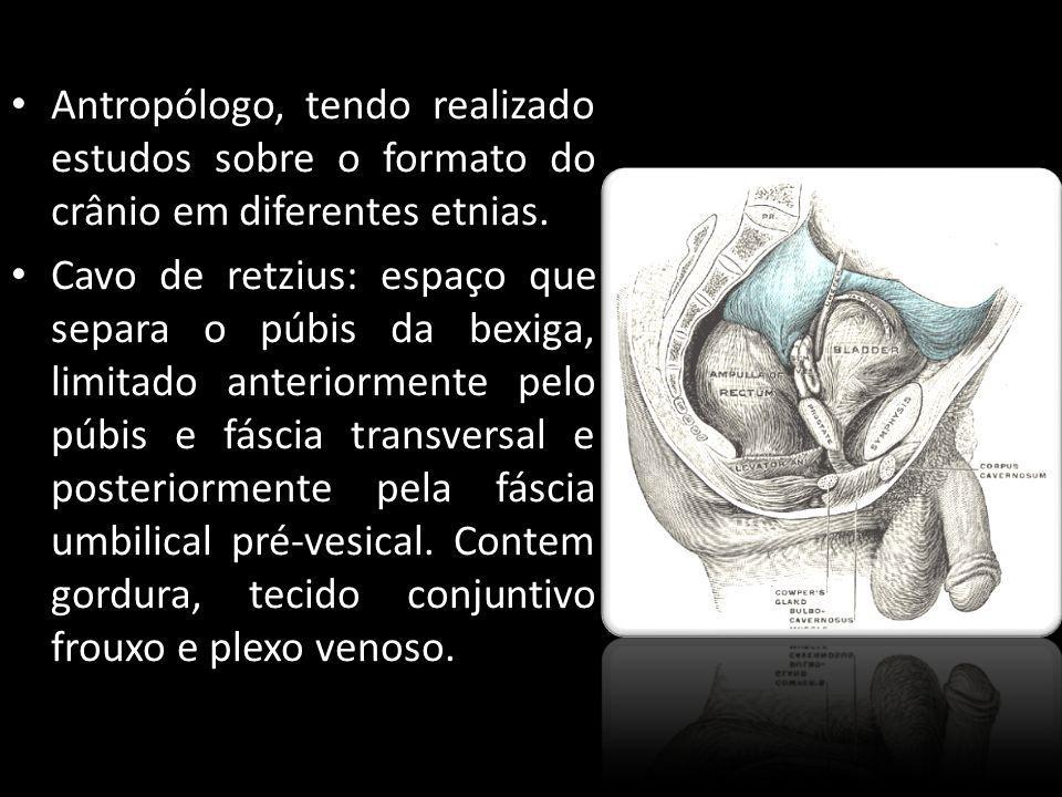 Antropólogo, tendo realizado estudos sobre o formato do crânio em diferentes etnias.