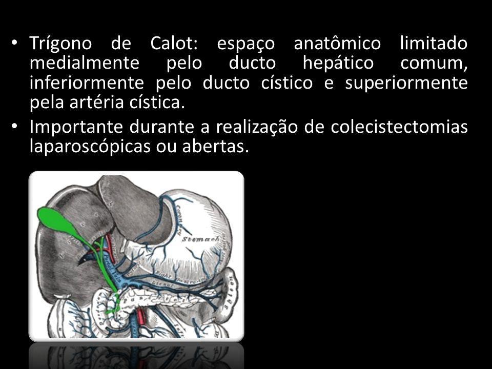 Trígono de Calot: espaço anatômico limitado medialmente pelo ducto hepático comum, inferiormente pelo ducto cístico e superiormente pela artéria cística.