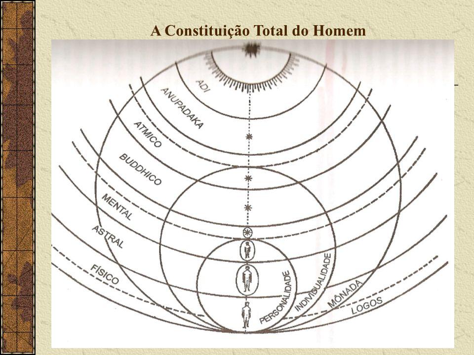 A Constituição Total do Homem