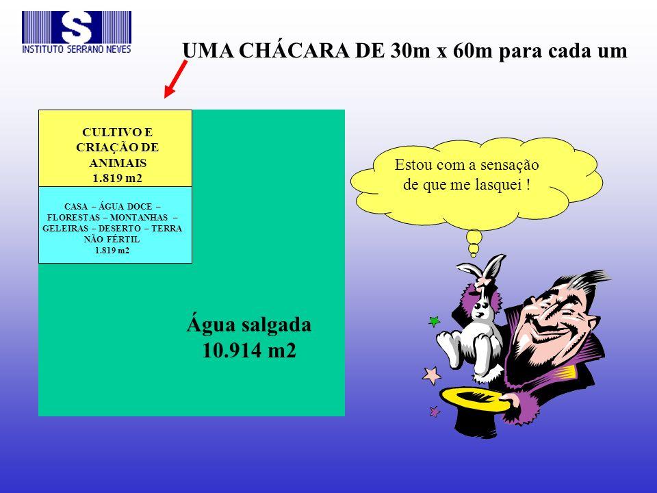 CULTIVO E CRIAÇÃO DE ANIMAIS 1.819 m2