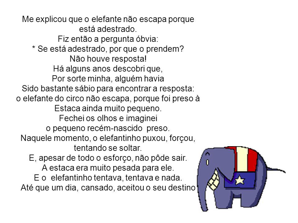 Me explicou que o elefante não escapa porque está adestrado.