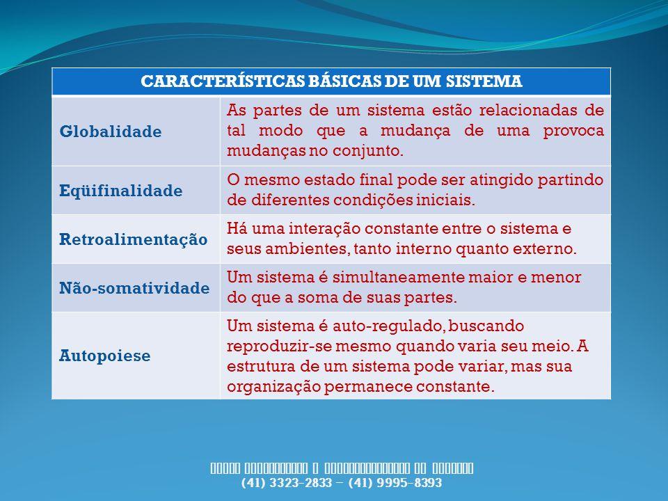 CARACTERÍSTICAS BÁSICAS DE UM SISTEMA