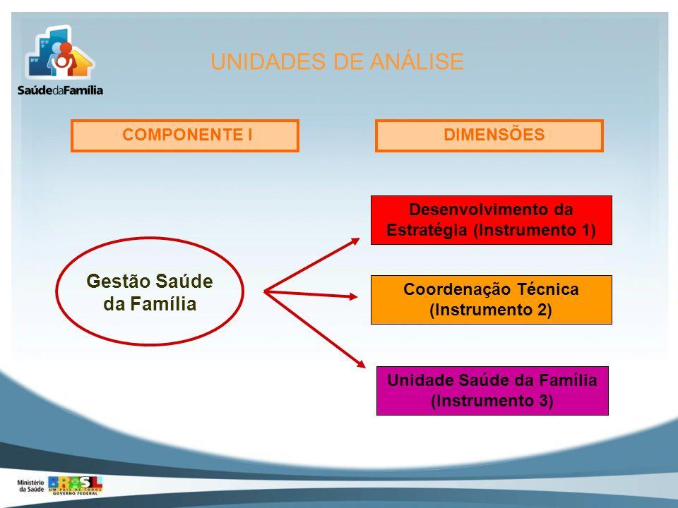 UNIDADES DE ANÁLISE Gestão Saúde da Família COMPONENTE I DIMENSÕES