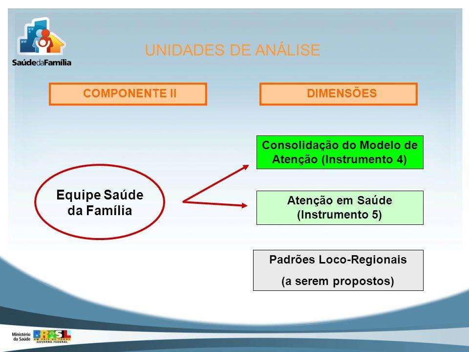 UNIDADES DE ANÁLISE Equipe Saúde da Família COMPONENTE II DIMENSÕES