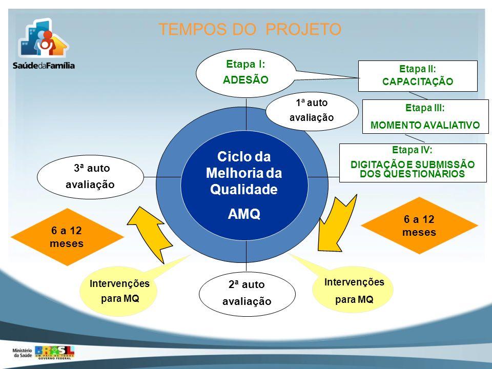 Ciclo da Melhoria da Qualidade DIGITAÇÃO E SUBMISSÃO DOS QUESTIONÁRIOS