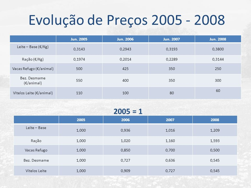 Evolução de Preços 2005 - 2008 2005 = 1 Jun. 2005 Jun. 2006 Jun. 2007