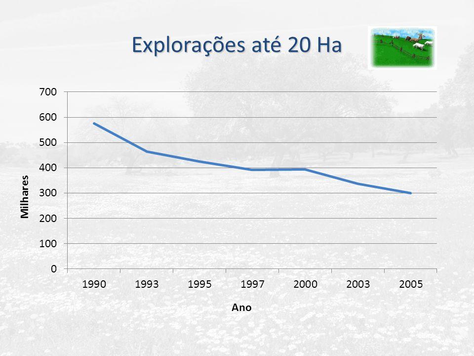 Explorações até 20 Ha