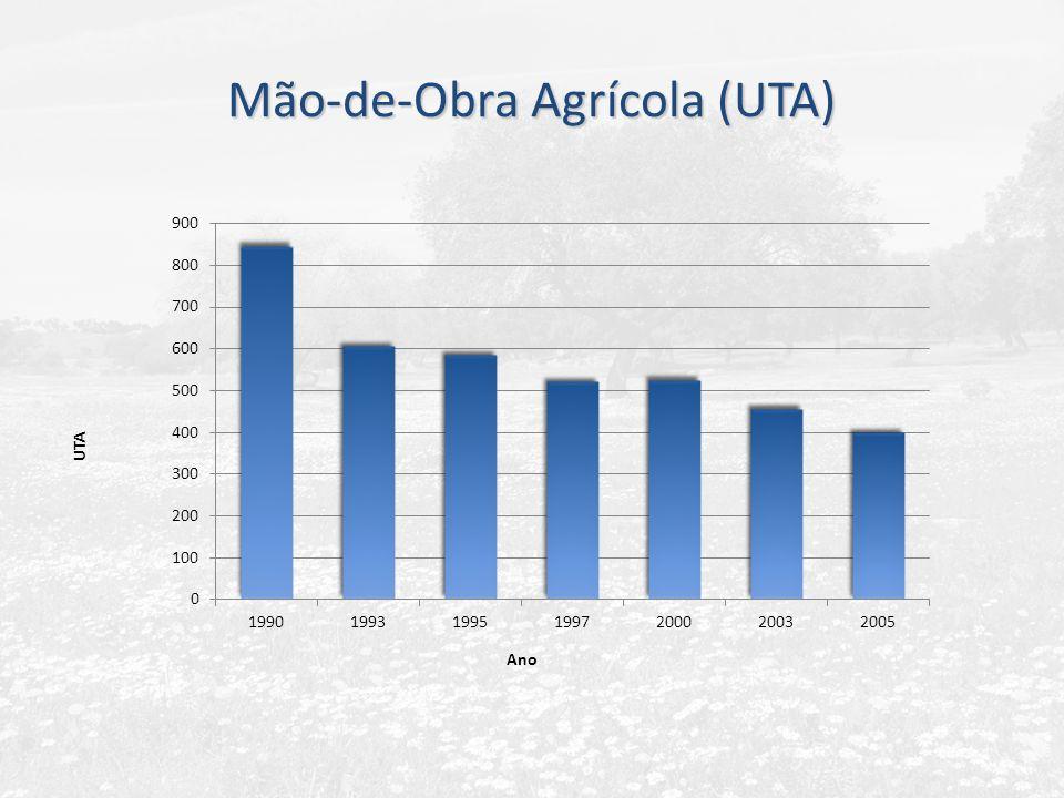 Mão-de-Obra Agrícola (UTA)