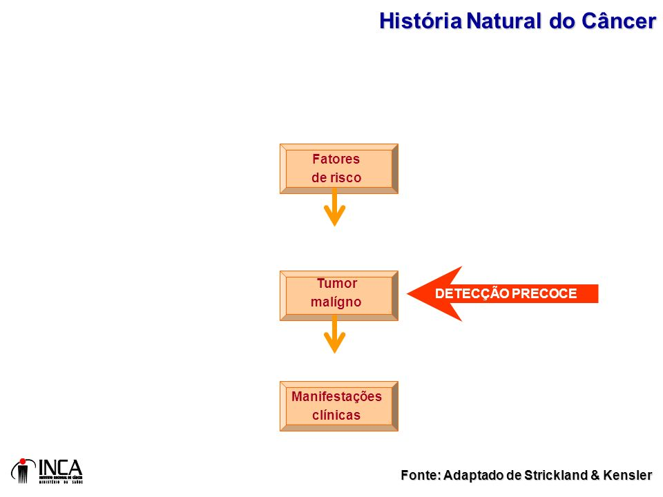 História Natural do Câncer