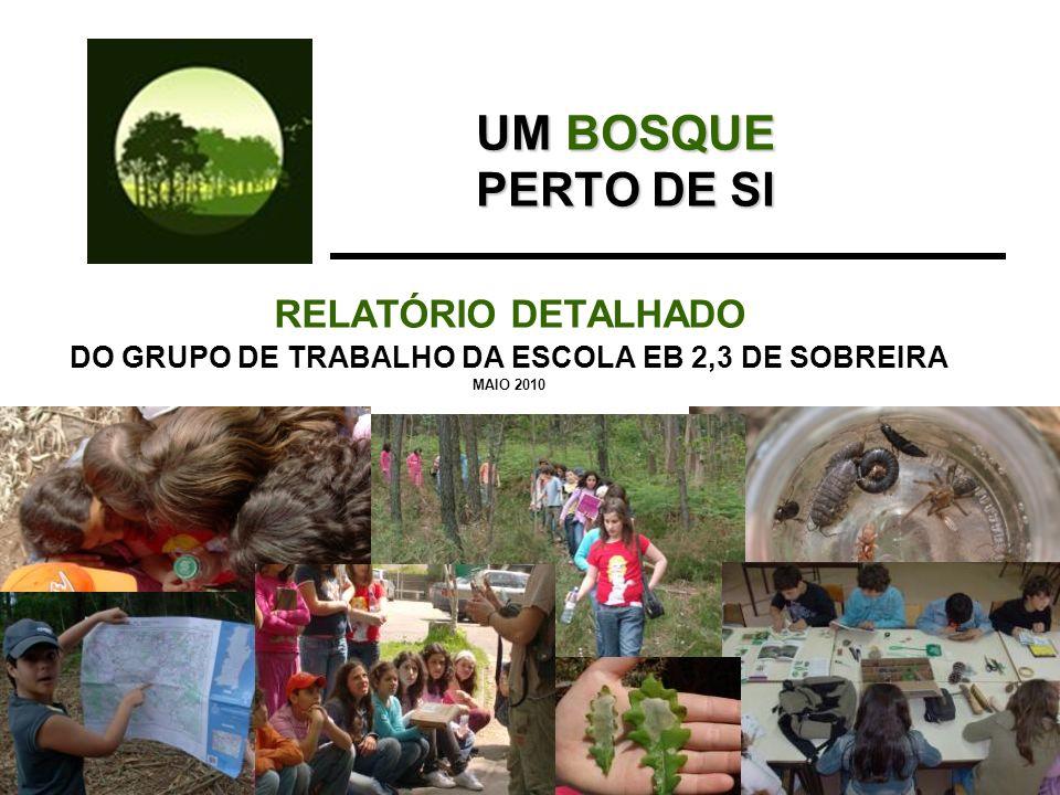DO GRUPO DE TRABALHO DA ESCOLA EB 2,3 DE SOBREIRA