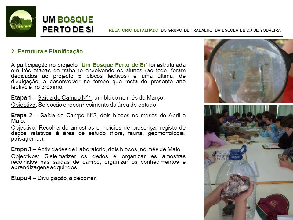 RELATÓRIO DETALHADO DO GRUPO DE TRABALHO DA ESCOLA EB 2,3 DE SOBREIRA