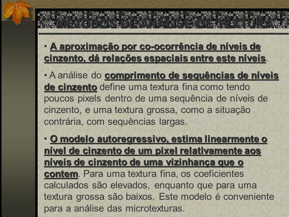 MÉTODOS DE ANÁLISE DE TEXTURA
