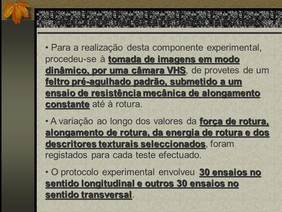 CRIAÇÃO DE UMA BASE DE DADOS DE IMAGENS