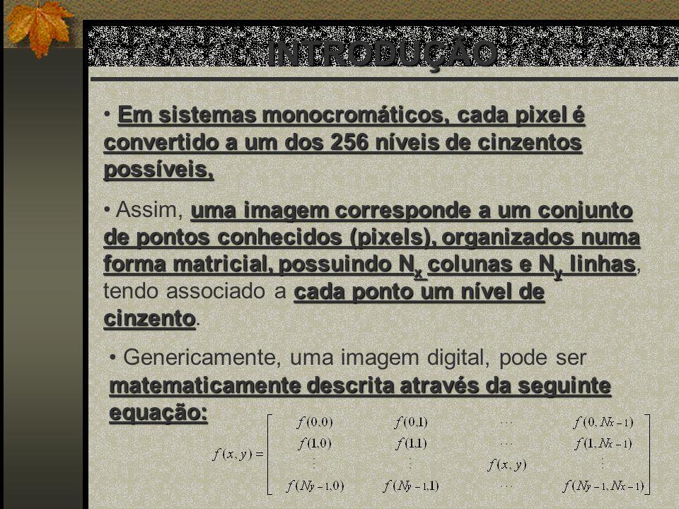 INTRODUÇÃO Em sistemas monocromáticos, cada pixel é convertido a um dos 256 níveis de cinzentos possíveis,