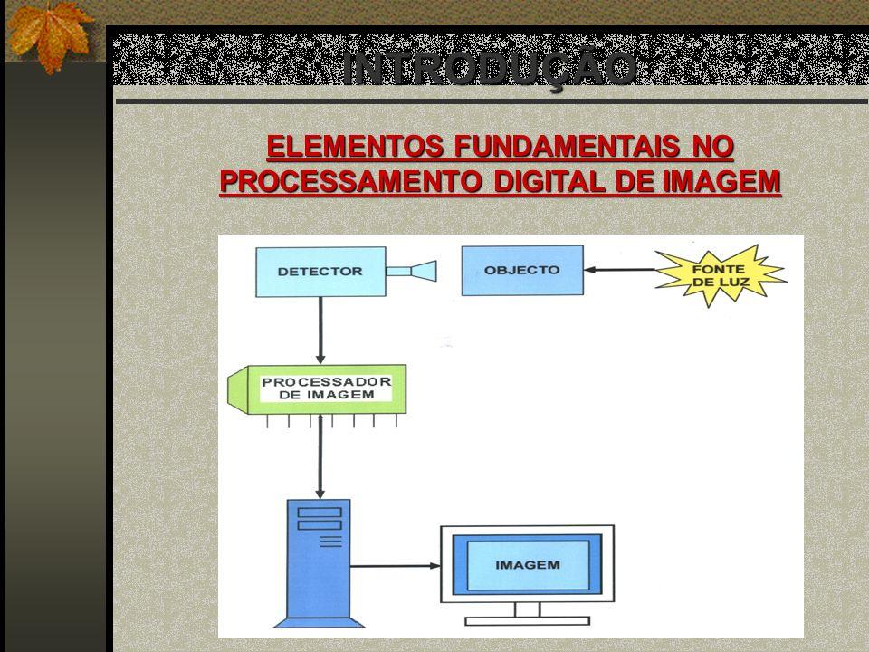 ELEMENTOS FUNDAMENTAIS NO PROCESSAMENTO DIGITAL DE IMAGEM