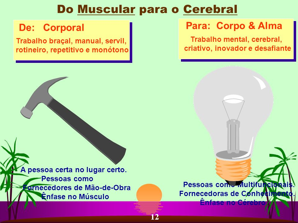 Do Muscular para o Cerebral