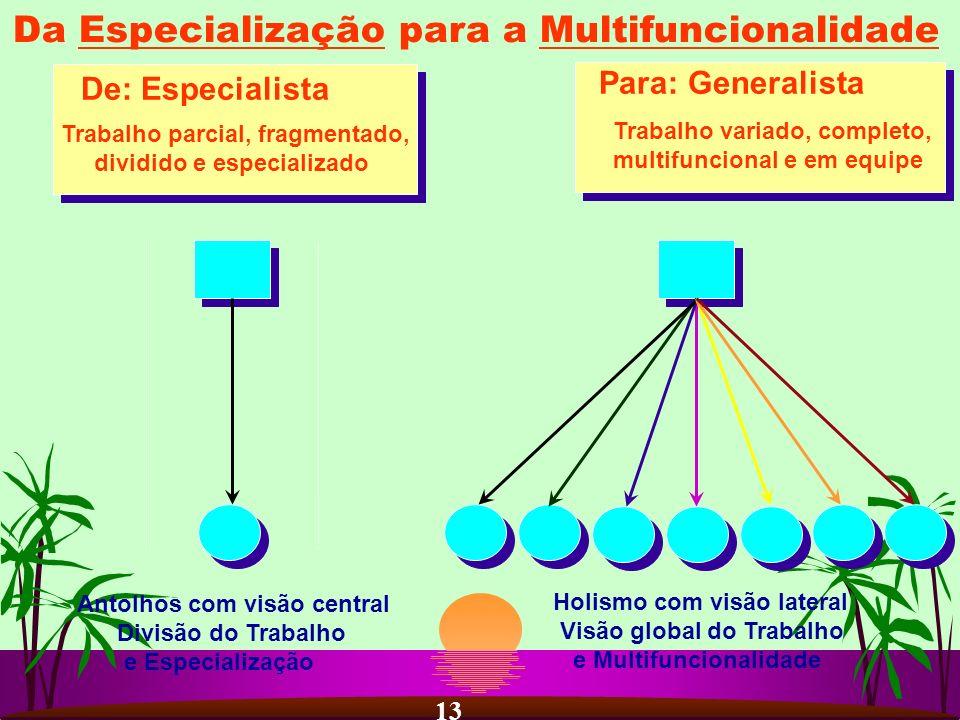Da Especialização para a Multifuncionalidade