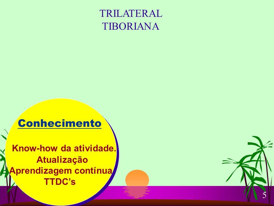 TRILATERAL TIBORIANA Conhecimento Know-how da atividade. Atualização
