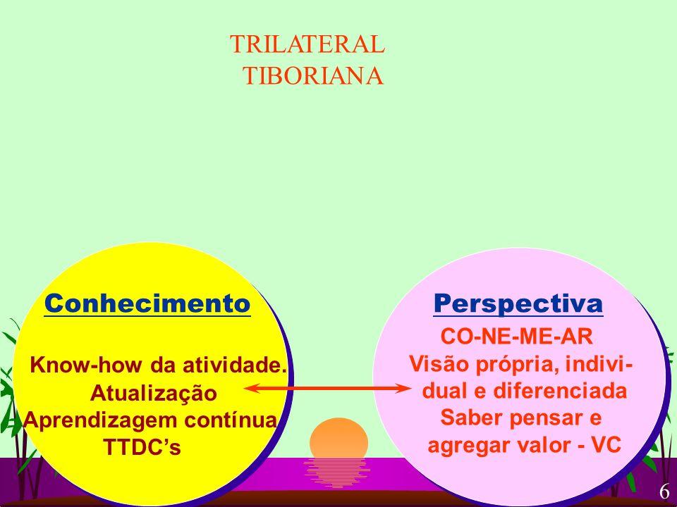 TRILATERAL TIBORIANA Conhecimento Perspectiva Know-how da atividade.