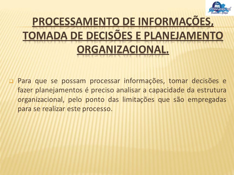 Processamento de informações, tomada de decisões e planejamento organizacional.
