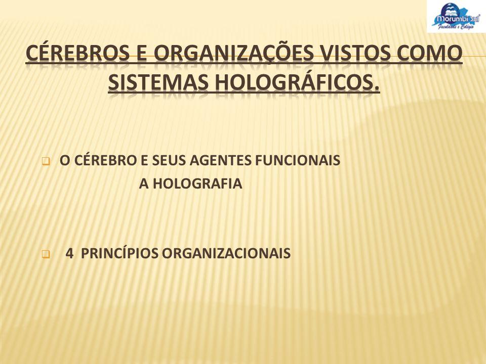 CÉREBROS E ORGANIZAÇÕES VISTOS COMO SISTEMAS HOLOGRÁFICOS.