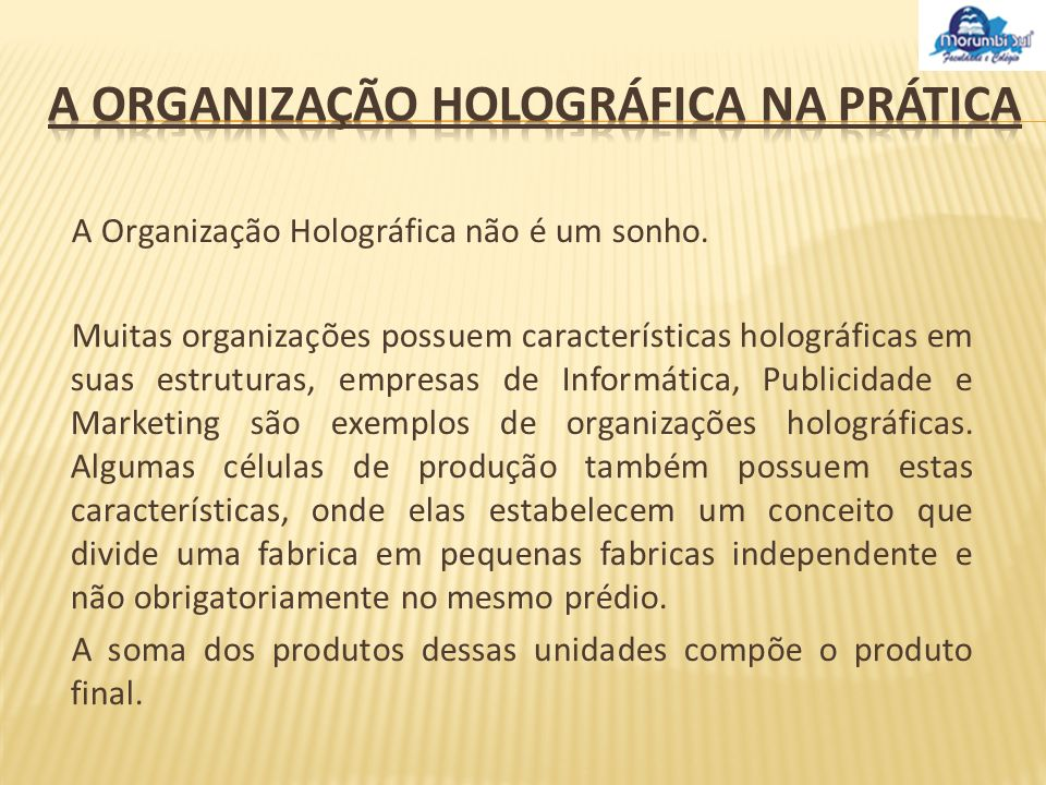 A Organização Holográfica na prática
