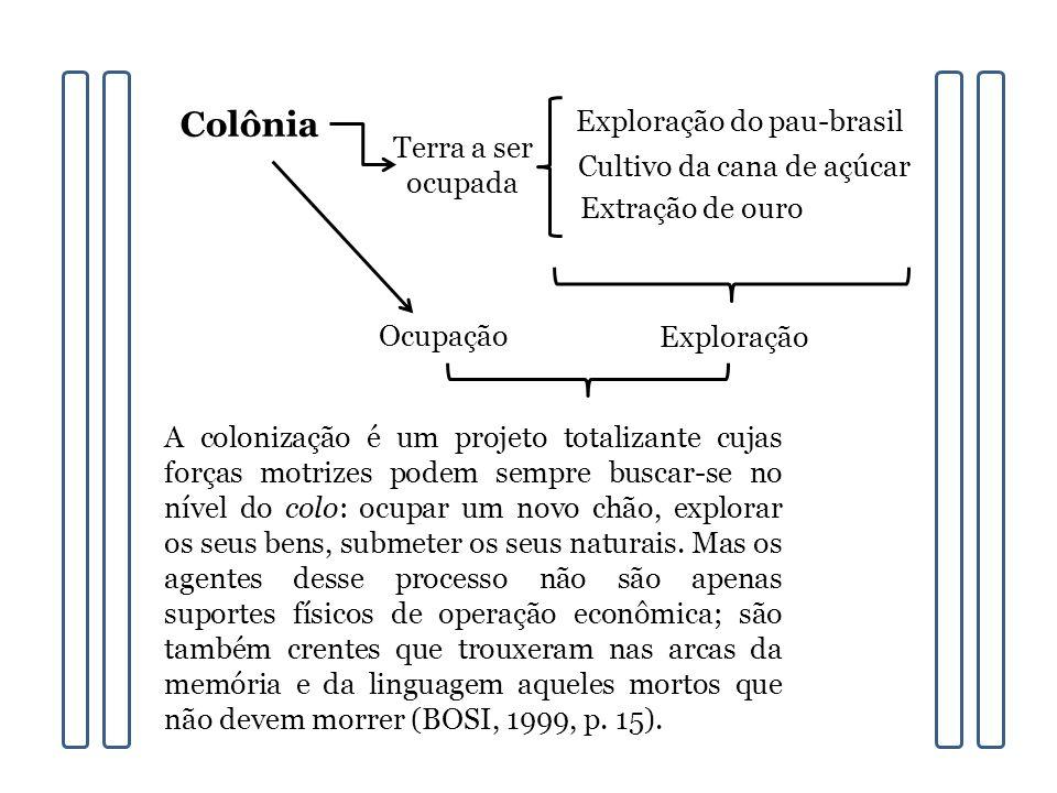 Colônia Exploração do pau-brasil Terra a ser ocupada