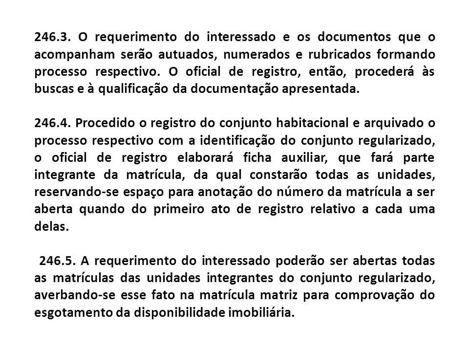 246.3. O requerimento do interessado e os documentos que o acompanham serão autuados, numerados e rubricados formando processo respectivo. O oficial de registro, então, procederá às buscas e à qualificação da documentação apresentada.